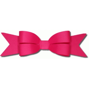3d puckered bow