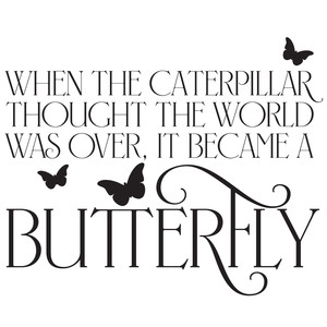 become a butterfly quote