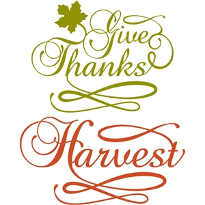 'give thanks' word group
