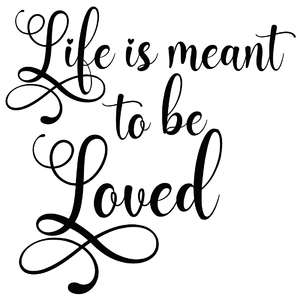 life is meant to be loved