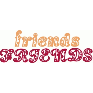 friends paisley text