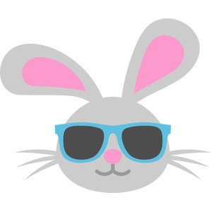 bunny sunglasses