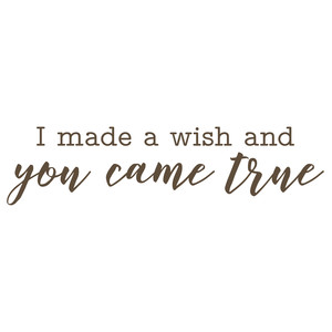 i made a wish and you came true