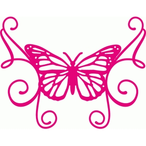 butterfly flourish frame