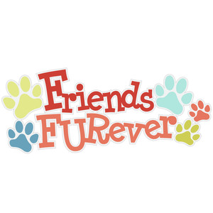 friends furever title