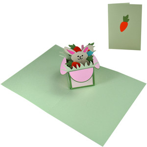 bunny fun pop up box in a card