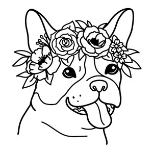 boston terrier with a flower crown