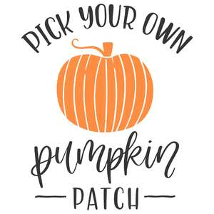pick your own pumpkin patch