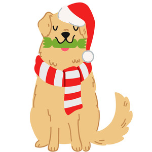 christmas golden retriever dog