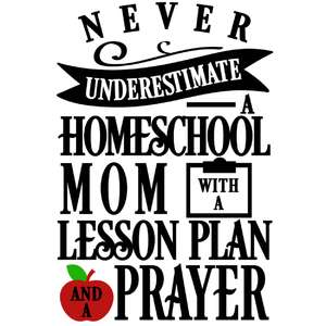 never underestimate homeschool mom