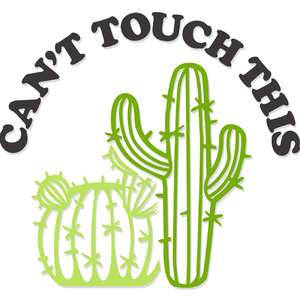 can't touch this cacti