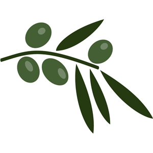 olives and branch
