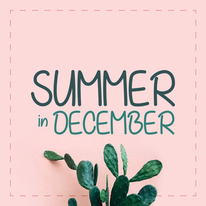 summer in december font