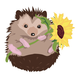 hedgehog with sunflower