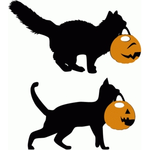 trick or treat cats