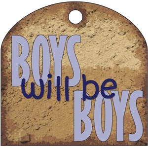 boys will be boys phrase tag
