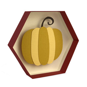 pumpkin hexagon shadowbox