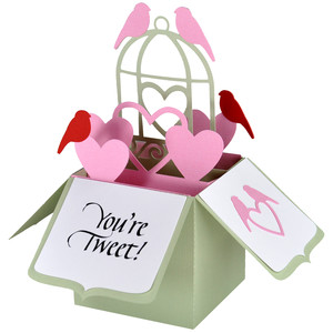 love birds card in a box