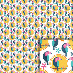 toucan background paper