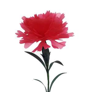 carnation red flower 3d