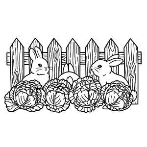 bunnies in a cabbage patch