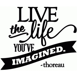 live the life you've imagined - vinyl phrase
