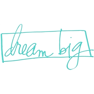 dream big hks