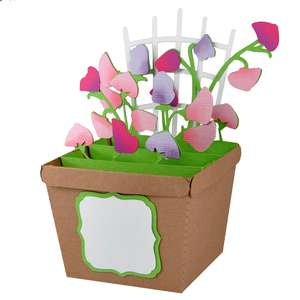 sweet peas pot card in a box