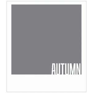 autumn polaroid frame