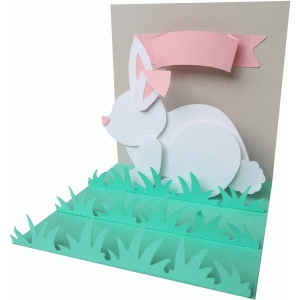 pop up rabbit or bunny card