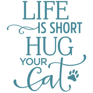 life is short hug your cat phrase