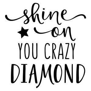 shine on you crazy diamond phrase