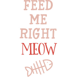 feed me right meow