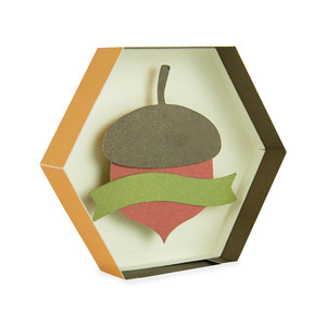 acorn hexagon box with banner
