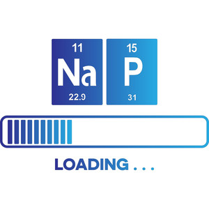 periodic table nap loading