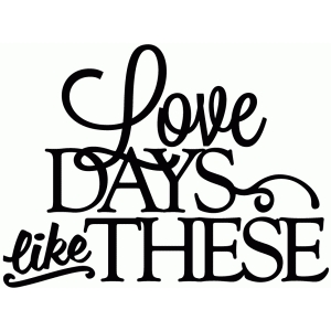 love days like these - vinyl phrase