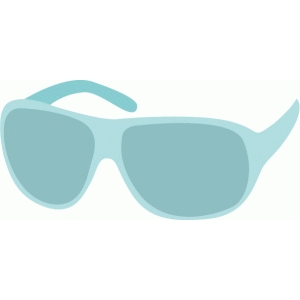 echo park sunglasses