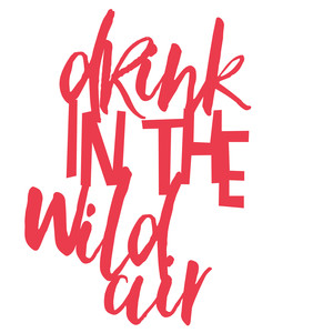 drink in the wild air