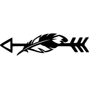 feather arrow