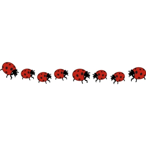 lady bug border pc