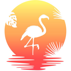 flamingo sunset beach