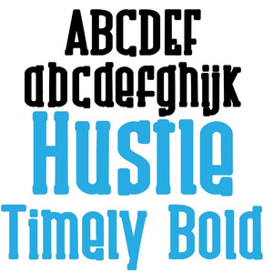 zp hustle timely bold