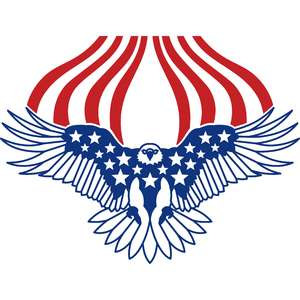 independence day american eagle