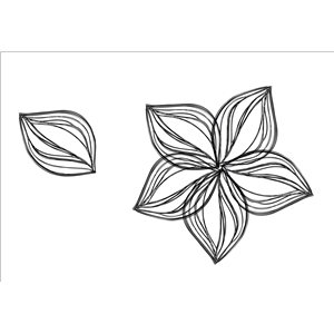 flower and leaf sketch
