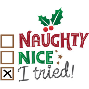 naughty or nice list