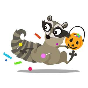 raccoon stealing candy