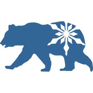 bear with snowflake