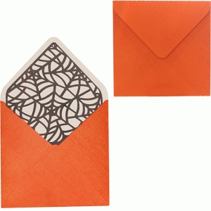 envelope with web liner