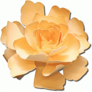 3d sunblest tea rose