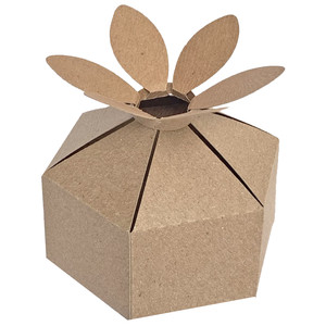 six sided daisy box